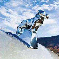 Chrome Large Mack Bulldog Hood Ornament