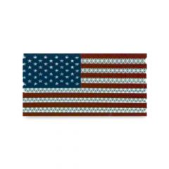 """6-1/2"""" American Flag Conspicuity Tape"""