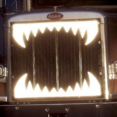 Reflective Jaws Bugscreen