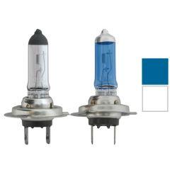 Halogen Headlight Bulbs (PR)